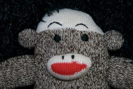 monkeys-64.jpg